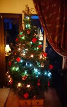 Norway Spruce Decorated