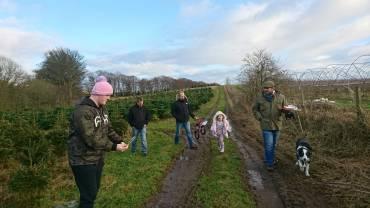 brisk-family-walks