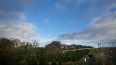 drone-over-farm03